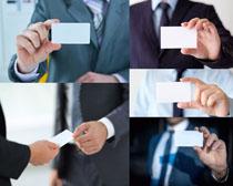 商务男士手中的名片摄影高清图片