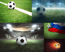 草地足球攝影高清圖片