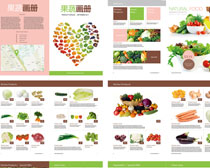 水果蔬菜画册矢量素材