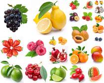 新鲜水果展示摄影高清图片