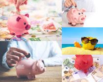 存钱小猪金融摄影高清图片