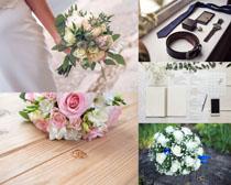 爱情鲜花摄影高清图片
