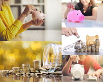 金币与存钱罐小猪摄影高清图片