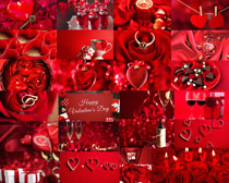 情人節裝飾花朵攝影高清圖片