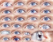 眼晴里的信息摄影高清图片
