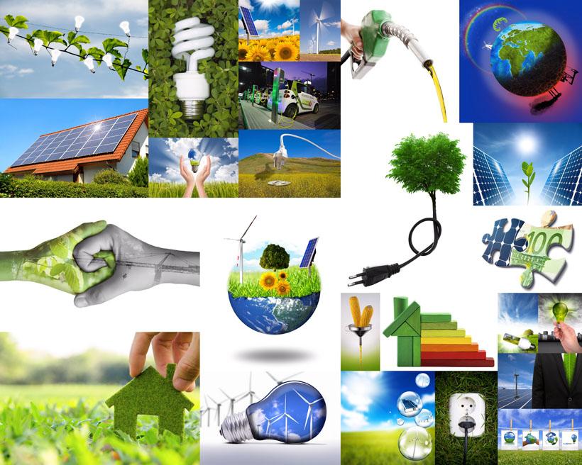 綠色環保展示攝影高清圖片