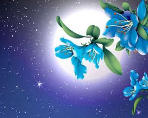 圆月与花朵PSD素材