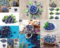 水果蓝梅摄影高清图片