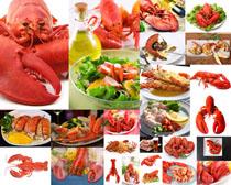 美食大龙虾摄影高清图片