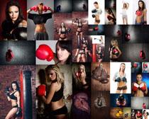 拳擊歐美美女攝影高清圖片
