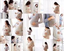 孕妇大肚子女人摄影高清图片