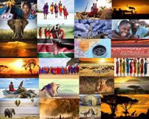 非洲人们与动物摄影高清图片
