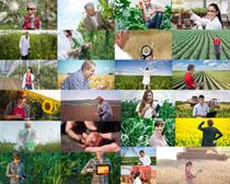 農業種植人類攝影高清圖片