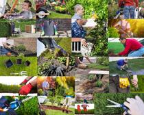 种植花草的人物摄影高清图片