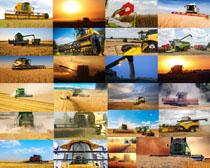 丰收割稻机器摄影高清图片