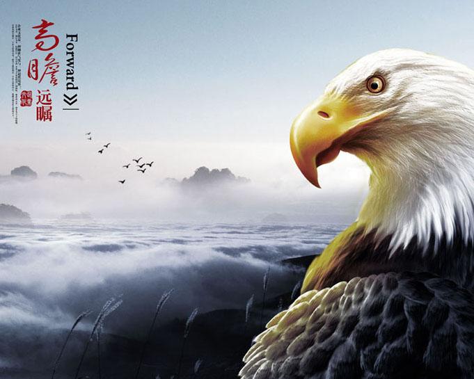 老鹰企业文化PSD模板