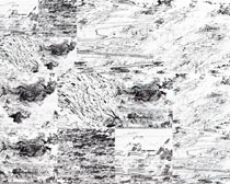 黑白胶印背景摄影高清图片