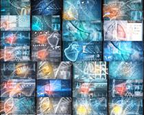 人体器官图摄影高清图片