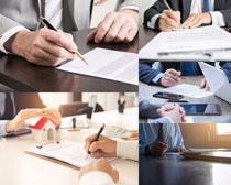 合同签名商务男士摄影时时彩娱乐网站