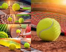 網球體育運動攝影高清圖片