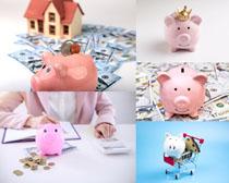 小猪存钱罐金融摄影高清图片