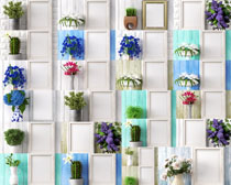 装饰盆栽花摄影高清图片