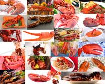 大海龙虾食材摄影高清图片
