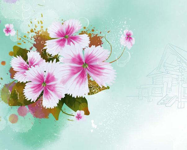 背景图花朵展示PSD素材