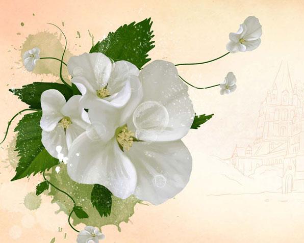 白色绘画花朵PSD素材