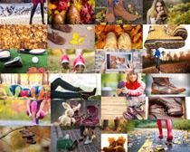 秋天風景鞋子攝影高清圖片