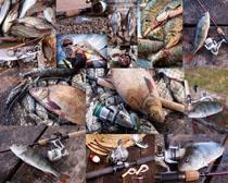 捕鱼工具摄影高清图片