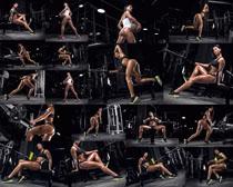 健身房性感美女拍摄高清图片