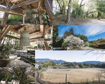 日本园林风光拍摄高清图片
