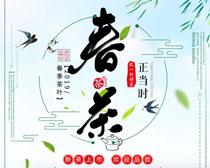 春季茶叶海报设计PSD素材