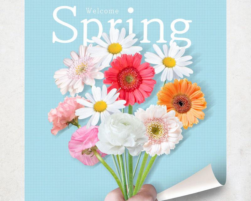 封面美丽花朵背景PSD素材