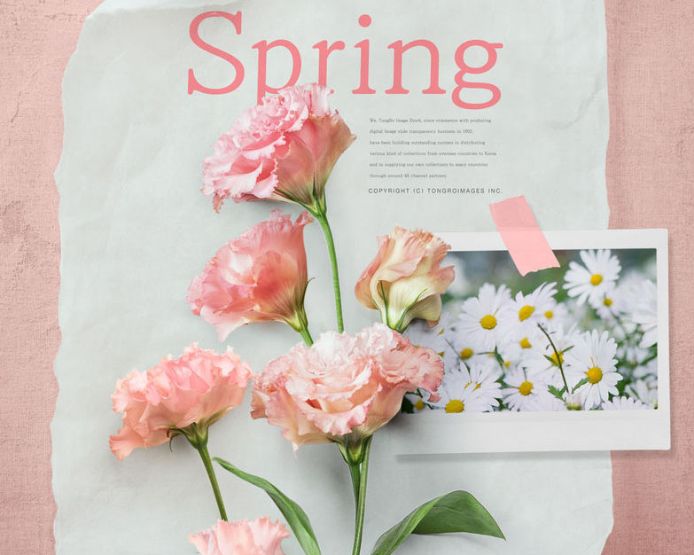 花朵小清新纸张PSD素材