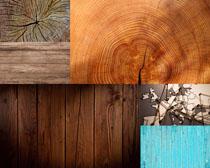 年老的木头背景拍摄高清图片