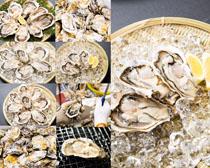 海鲜生耗食物摄影高清图片