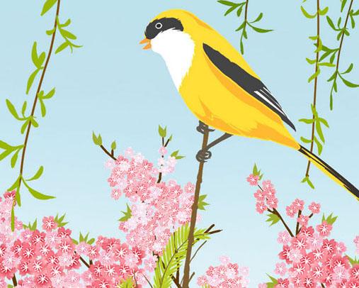 春天花朵小鸟绘画PSD素材
