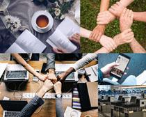 努力奮斗的商務團隊攝影高清圖片