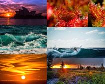 美丽的自然景观拍摄高清图片