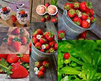 新鲜草莓果实摄影高清图片