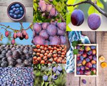 水果西梅展示PSD素材