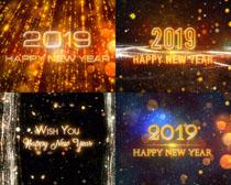 星光節日2019攝影高清圖片