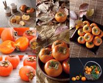柿子水果展示拍摄高清图片