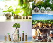 金融貨幣展示攝影高清圖片