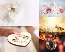 情侶戒花朵攝影高清圖片