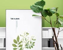 绿植与相框PSD素材