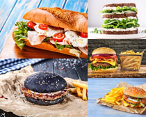 漢堡包食物展示攝影高清圖片