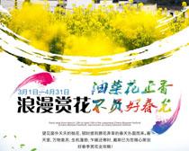 浪漫赏花广告PSD素材